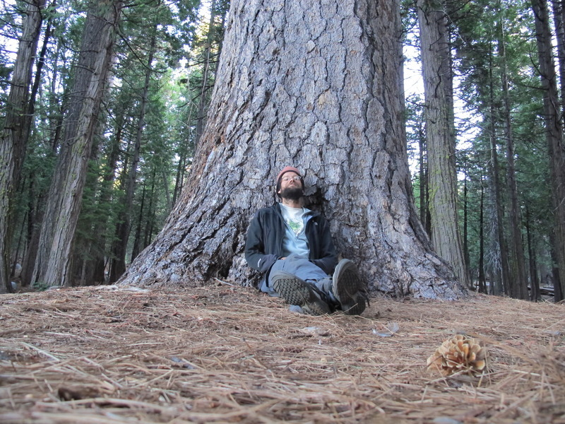 Marc with Ponderosa Pine